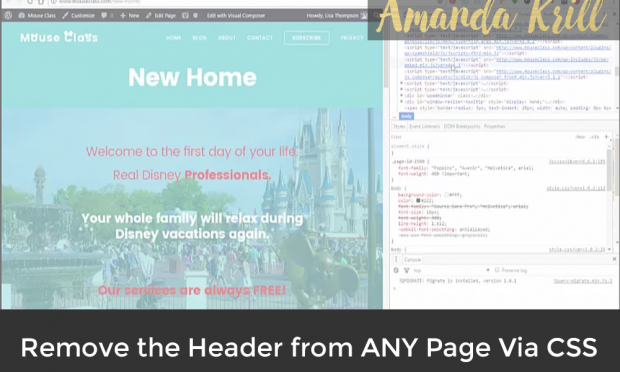 Remove the Header from ANY Page Via CSS