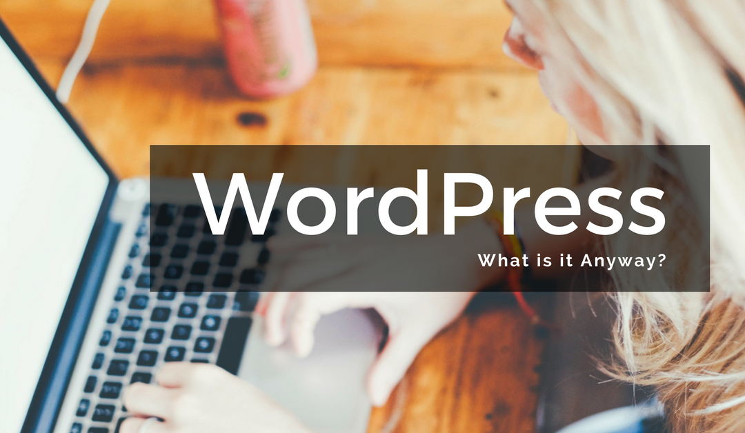 What is WordPress anyway?