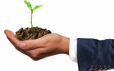 Smart Business Owner's Guide to Growth