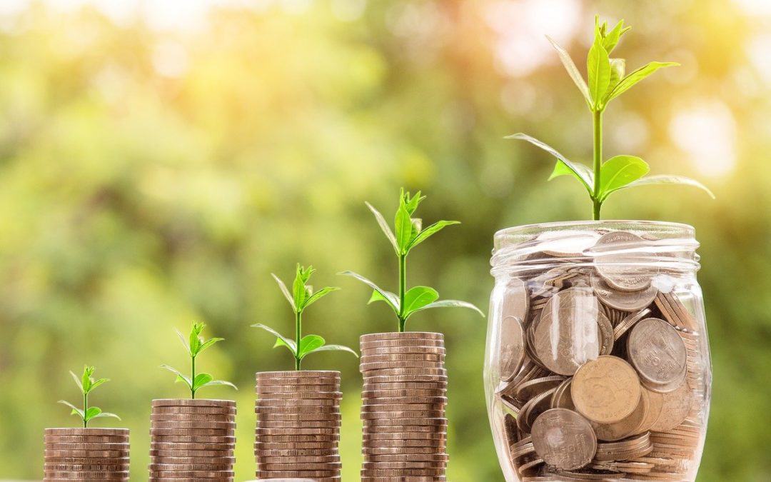 Eco-Friendly Money Making Ideas This Year